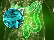 Clinically depressed people found to have fewer Bacteroides gut bacteria…