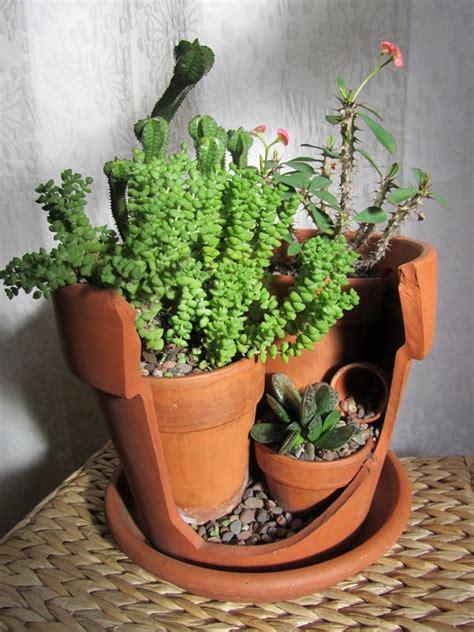 succulent gardens in pots upcycled broken pot cactus succulent garden by salvagednature