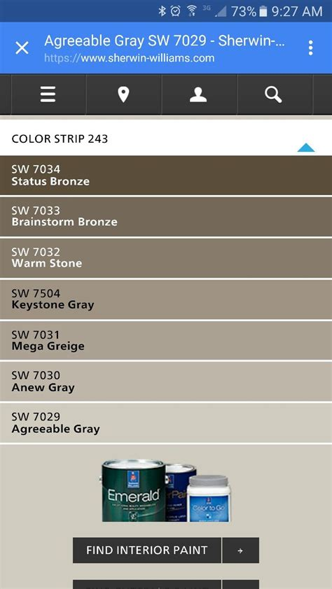 agreeable gray paint strip paint house