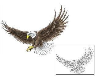 eagle tattoo design ccf  tattoojohnnycom