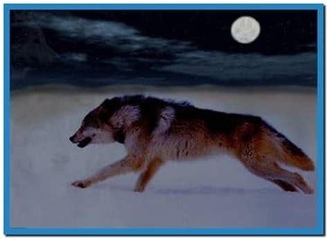 running wolves screensaver