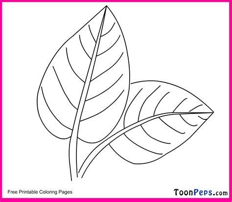 leaf print  coloring home