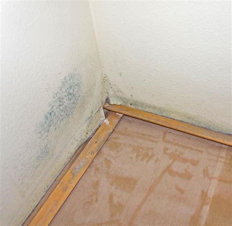 nasse flecken an der wand t 252 ckische sporen bei der schimmelentfernung ist atemschutz pflicht welt