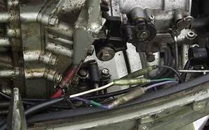 1987 Suzuki Dt25 Missing Parts Of The Wiring Harness  Cdi