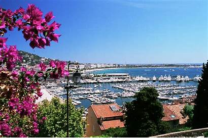Cannes France Background Port Flowers Wallpapers Wallpaperaccess