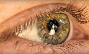 Video  Wedding Photographed Through Guests Eyes