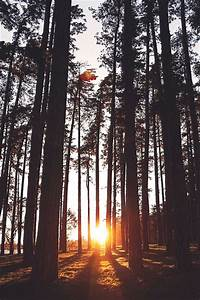 10+ ideas about Hipster Photography on Pinterest | Indie ...