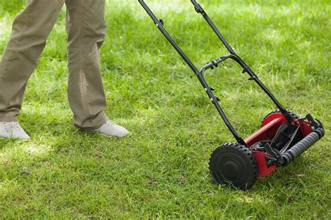 Wie Oft Rasen Lüften by Rasen Richtig Vertikutieren Anleitung In 9 Schritten