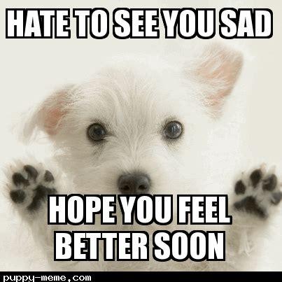 Funny Feel Better Memes - feel better