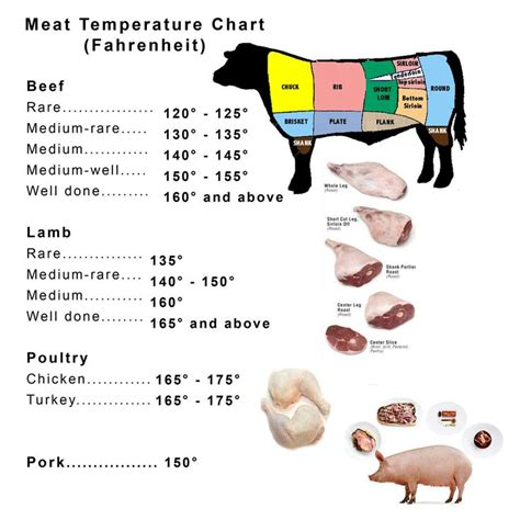 cook temp for pork top 25 best meat temperature chart ideas on pinterest