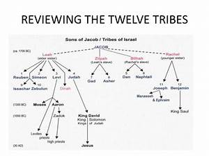 12 Tribes Of Israel Family Tree Pictures To Pin On