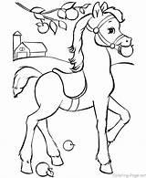 Coloring Horse Herd Wild Horses Getcolorings sketch template