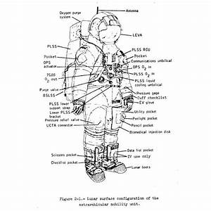 space suit parts including the protective gloves for the With space suit diagram