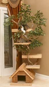Arbre A Chat En Palette : comment fabriquer un arbre chat arbre chat pinterest chats maison pour chat et animal ~ Melissatoandfro.com Idées de Décoration