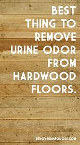 70 best how to remove urine odor images on pinterest With removing dog urine odor from hardwood floors