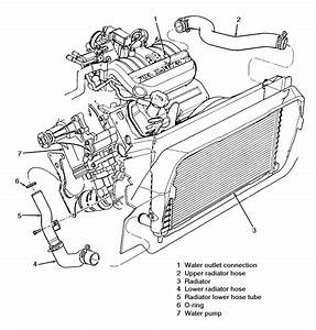 2002 Ford Taurus Coolant System Diagram