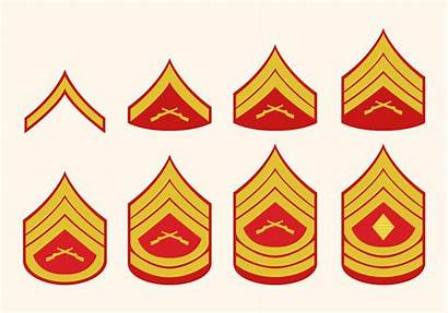 Rank Marine Corps Military Insignia Enlisted Ranks