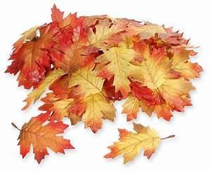 Tischdeko Selber Machen Herbst : tische selber dekorieren tischdekoration selber machen floristik hochzeit ~ Orissabook.com Haus und Dekorationen