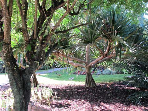 mounts botanical garden mounts botanical garden west palm maps