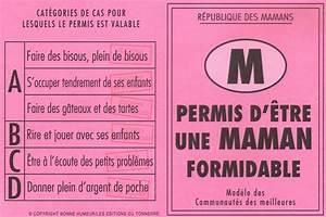 Quand Sont Retirés Les Points Du Permis : permis d 39 tre une maman formidable ~ Medecine-chirurgie-esthetiques.com Avis de Voitures