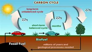 Carbon Cycle Of Transportation Fuels  In Terms Of Time Needed For