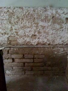 Enduit à La Chaux : aide enduit la chaux sur mur de parpaings en ext rieur ~ Dailycaller-alerts.com Idées de Décoration