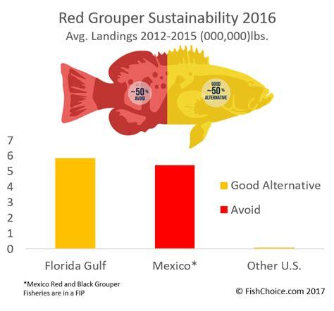 grouper global sustainability mexico landings average based its