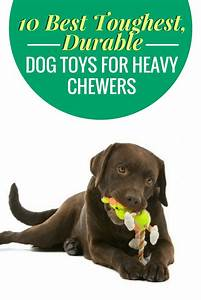 best toys for labs toys model ideas With dog chew toys for heavy chewers