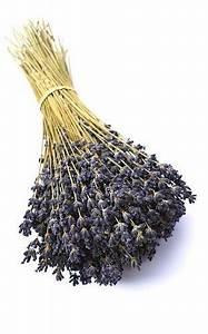 Lavendel Tee Selber Machen : selber machen mit lavendel dr schweikart n hen pinterest lavendel selber machen und ~ Frokenaadalensverden.com Haus und Dekorationen