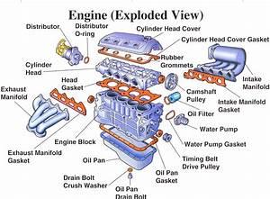 670 Cc Predator Engine Wiring Diagram  U2022 Downloaddescargar Com