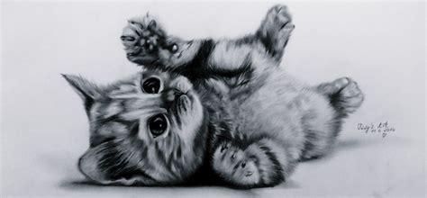 Lets Draw: Cute Kitten (Baby-cat) ♥