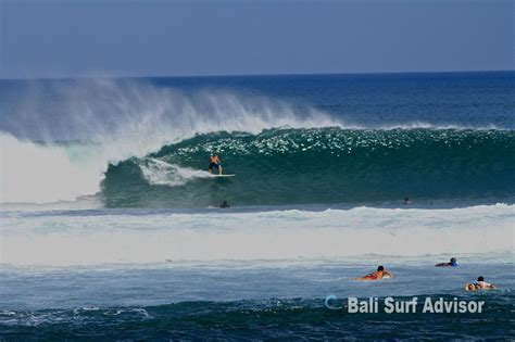 medewi beach west bali  barrel waves bali surf advisor