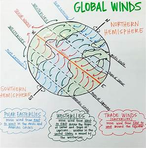 Global Winds Anchor Chart  Polar Easterlies  Westerlies