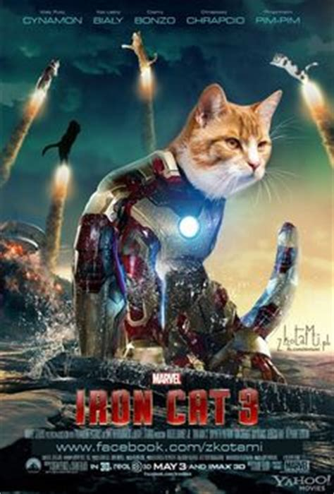 1000+ Images About Cat Movie Posters  Zkotamipl On