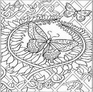 Animal Coloring Pages ...