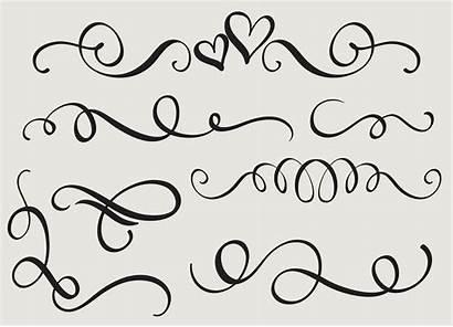 Calligraphy Flourish Decorative Vector Illustration Whorls Eps10