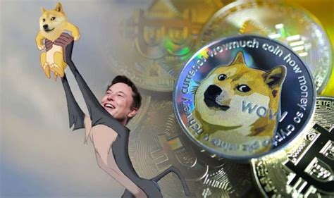 Dogecoin price today: How much is dogecoin stock – What is ...