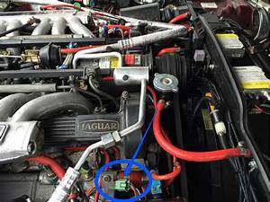 V12 Fuel Injection Wire Harness - Page 2 - Jaguar Forums