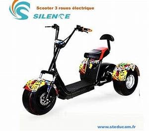 Scooter Electrique 2 Places : scooter lectrique 2 places bordeaux 33000 scooter occasion pas cher vivastreet ~ Melissatoandfro.com Idées de Décoration