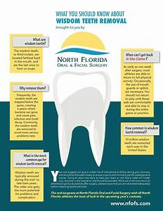 Elite Wisdom Teeth Timeline  Dentalimplantsurgery