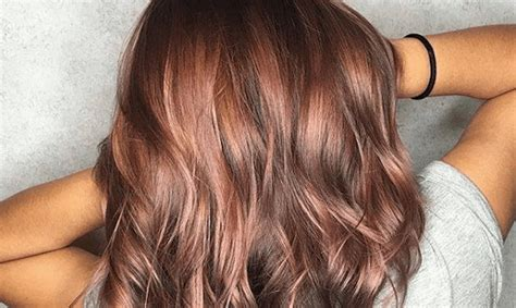 Brown Hair Dye by Photos Of Brown Hair On Brunettes Simplemost