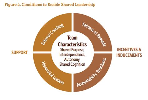 whys  hows  shared leadership  higher education