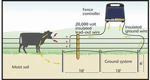 The Grounding Circuit Is A Critical Component Of Your Electric Fence  Here U0026 39 S How To Install It