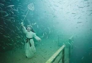 Underwater Shipwreck Art Gallery - Photos Released! - My ...
