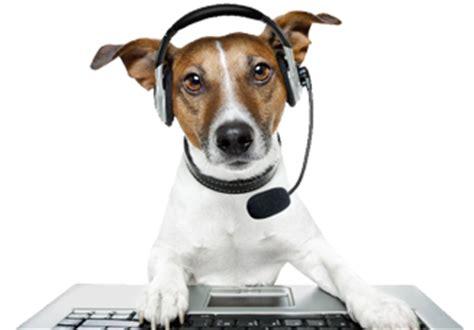 contact  fun  dogs