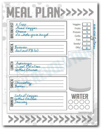 day fix mini meal plan   planner template clean