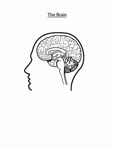 color printer test page pdf download coloringsnet With brain wiring test
