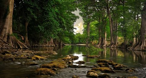 Cool Nature Photos, Nature Wallpaper For Samsung, Hd Landscape Wallpapers, Green, Plants