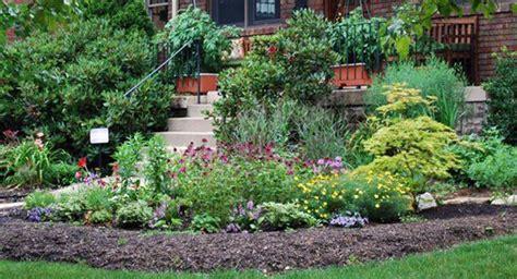 landscape plants list garden plant plant a shade garden garden plants