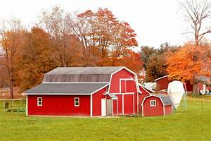Red Barn In Autumn Field Free Stock Photo